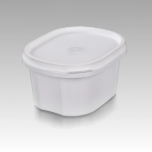 Container 450 ML PR-4